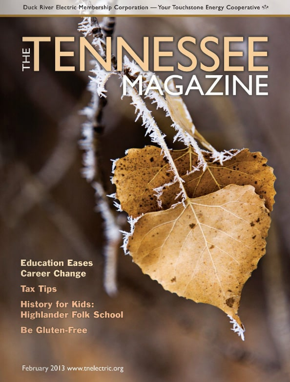 Tennessee Magazine cover for February 2013