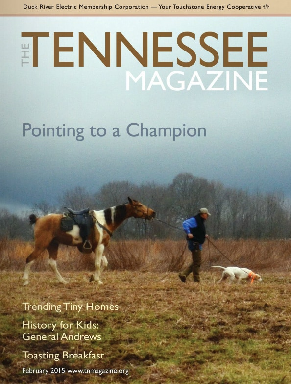 Tennessee Magazine cover for February 2015