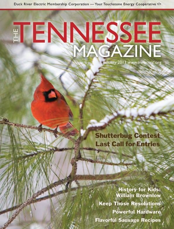 Tennessee Magazine cover for January 2013
