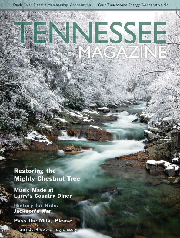 Tennessee Magazine cover for January 2014