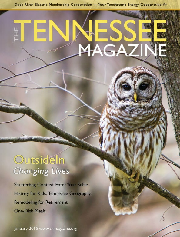Tennessee Magazine cover for January 2015