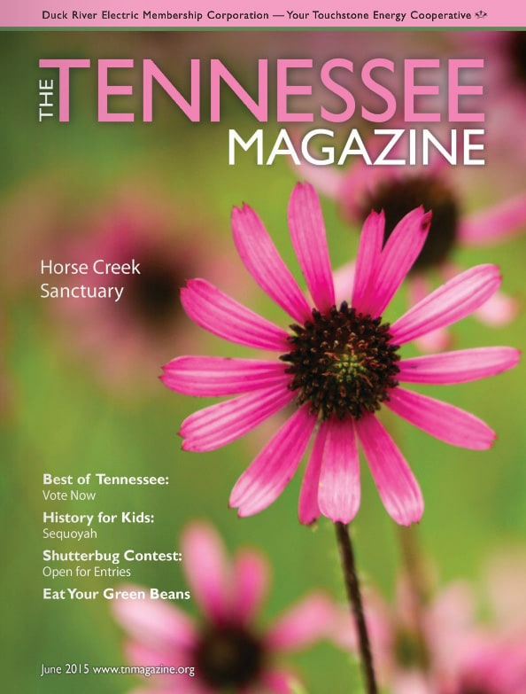Tennessee Magazine cover for June 2015