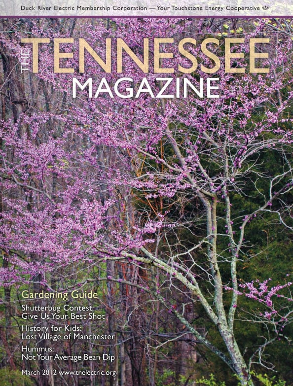Tennessee Magazine cover for March 2012