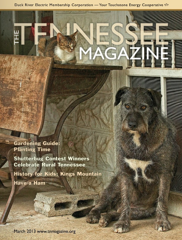 Tennessee Magazine cover for March 2013