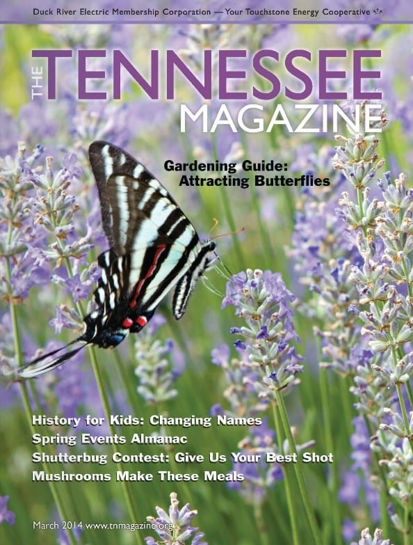 Tennessee Magazine cover for March 2014