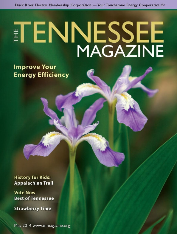 Tennessee Magazine cover for May 2014