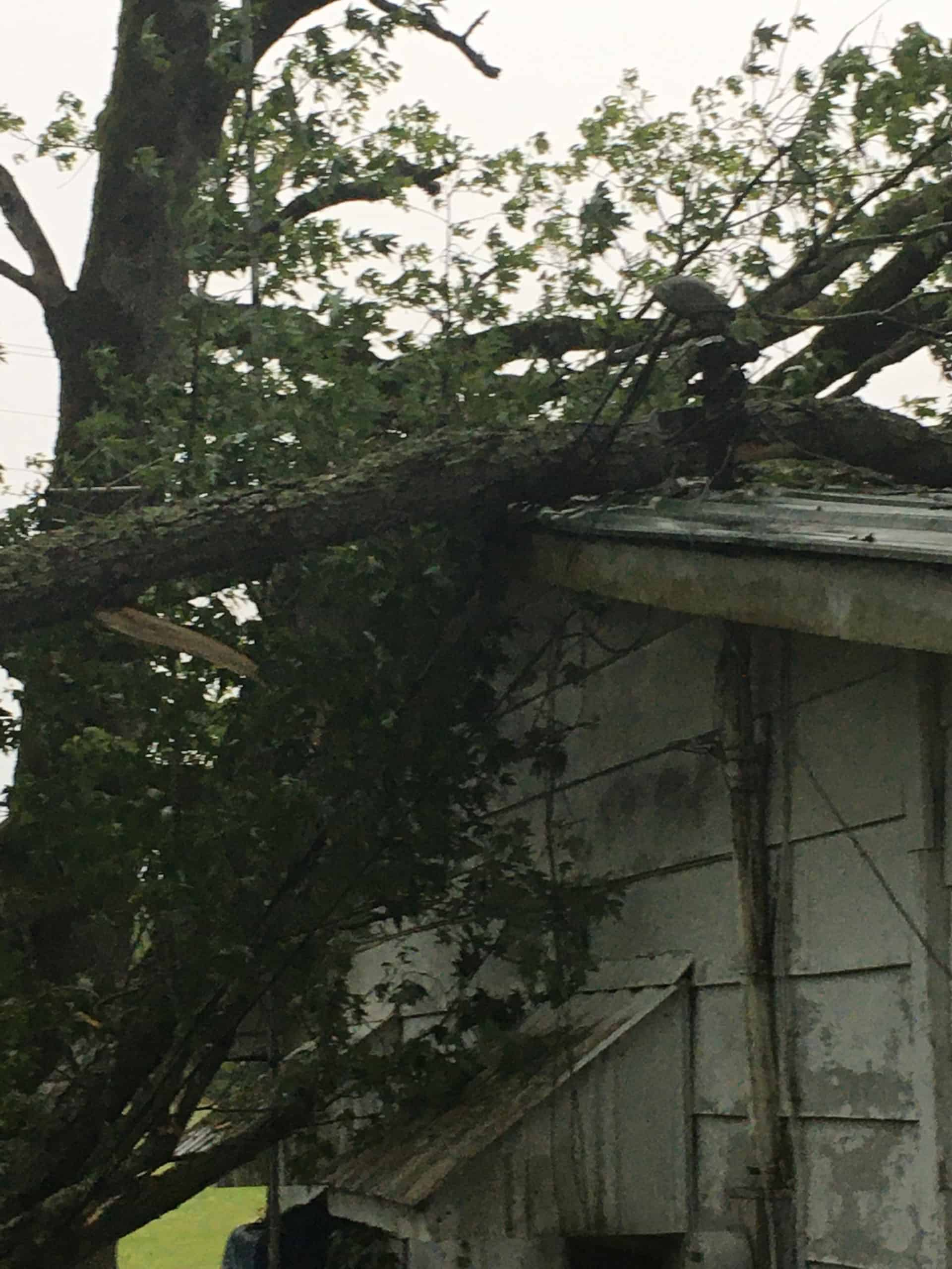 Severe storm, damaging winds leave 19,000 without power Sunday