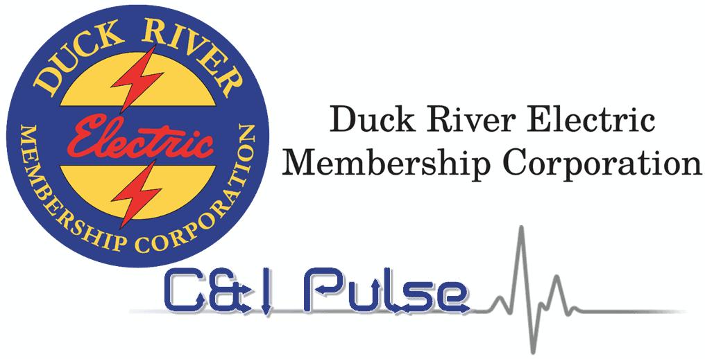 CI Pulse Logo with DREMC